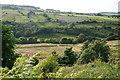 SE0618 : The valley of Black Brook by Bill Boaden