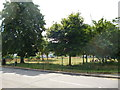 TQ2069 : New Malden:  Barton Green by Dr Neil Clifton
