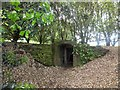 SU3227 : Entrance to the ice house at Mottisfont Abbey by David Smith
