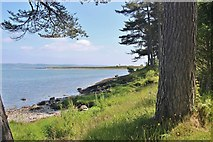 NR9967 : Across the bay to Carry Point by Alan Reid