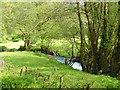 SN0134 : Afon Gwaun near Llanychlwydog by Dylan Moore