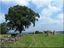 SK2262 : A view of Nine Stone Close by Neil Theasby