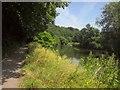 ST6371 : River Avon above Conham Ferry by Derek Harper