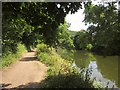 ST6371 : River Avon below Avon Valley Park by Derek Harper