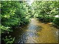 SX0963 : River Fowey from Kathleen Bridge by Maurice D Budden