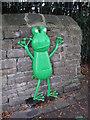 SE1438 : Skater Frog by John Illingworth