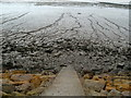 ST3782 : Estuary mud, Goldcliff by Jaggery