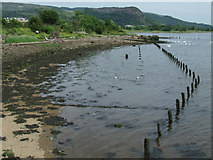 NS4074 : Posts on the shore by Thomas Nugent