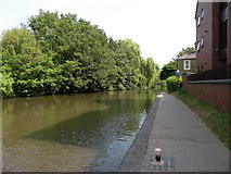 SO8554 : Worcester and Birmingham canal by Keith Edkins