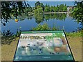 ST1879 : Information board, Roath Park Lake by Robin Drayton