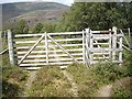 NO1490 : An 8-bar wooden gate in the deer fence boundary of Morrone Birklands NR by Stanley Howe