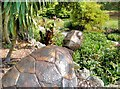 SZ5476 : Ventnor Botanic Garden, Giant Sea Turtle by David Dixon