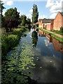 SK4833 : Erewash Canal by David Lally
