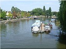 TQ1673 : View of Twickenham riverside from the bridge to Eel Pie Island by Marathon