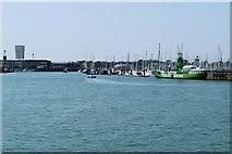 SZ6299 : Haslar Marina, Portsmouth Harbour by David Dixon