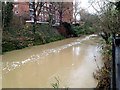 SP3165 : River Leam in spate past Manor Court flats by Robin Stott