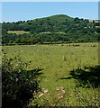SO1043 : Peak of Twyn y Garth viewed from Erwood by Jaggery