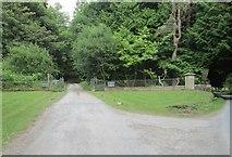 NN9952 : One of the entrance drives to Tulliemet House by James Denham