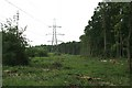 TQ1462 : Electricity transmission line across Arbrook Common by Hugh Craddock