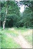 TQ1462 : Gas pipeline ride on Arbrook Common by Hugh Craddock