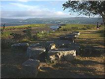 NH6091 : Celtic cross sculpture, picnic site at Bonar Bridge by Karl and Ali