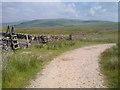 SD8465 : Pennine Bridleway below Langcliffe Scar by Mick Garratt