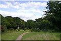 TQ4152 : Limpsfield Chart Golf Course by Ian Capper