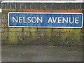 SP2965 : Nelson Avenue nameplate 1 by Robin Stott