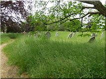 SU1012 : St James, Alderholt: churchyard (7) by Basher Eyre