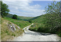 SN7553 : Former drovers road in Cwm Doethie Fawr, Ceredigion by Roger  Kidd
