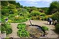 NZ0384 : The Walled Garden, Wallington Hall by Paul Buckingham