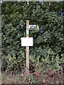 TM3083 : Byway sign off Hall Lane by Adrian Cable