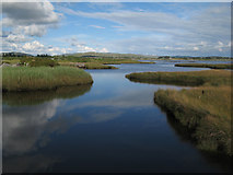 L8938 : Salt marsh with high tide by Jonathan Wilkins