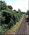 SO0662 : Heart of Wales railway line heads towards Llandrindod station by Jaggery