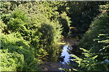 SU7151 : Basingstoke Canal from above Greywell Tunnel mouth by David Martin