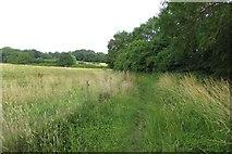 SP4702 : Footpath to Boars Hill by Steve Daniels