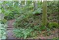SP5606 : Risinghurst, Oxford by David Hallam-Jones