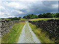 NY3705 : Walled Track following Scandale Beck by Chris Heaton