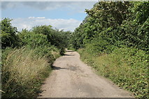 SK8166 : Track at the end of Trent Lane by J.Hannan-Briggs