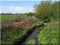 SJ4095 : River Alt at Gilmoss by Sue Adair