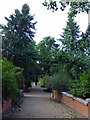 TQ2777 : Chelsea Physic Garden by PAUL FARMER
