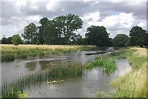 SP2556 : River Avon, Charlecote Park by Stephen McKay