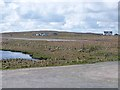 HU5966 : Runway on Whalsay airstrip by Oliver Dixon