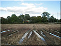 SP0969 : Waterlogged arable field by the A435, Pink Green by Robin Stott