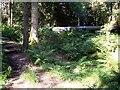 NO7497 : Water pipeline in Baldarroch Wood by Stanley Howe