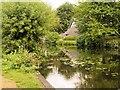 TM0733 : River Stour, Flatford by David Dixon