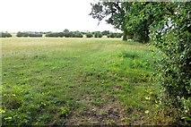 SP4702 : Footpath to Cumnor by Steve Daniels