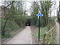 SP0386 : Ghost trains only now-Edgbaston, Birmingham by Martin Richard Phelan