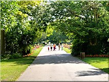 TL8564 : Bury St Edmunds Abbey Gardens by David Dixon