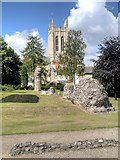 TL8564 : Abbey Ruins and Cathedral, Bury St Edmunds by David Dixon